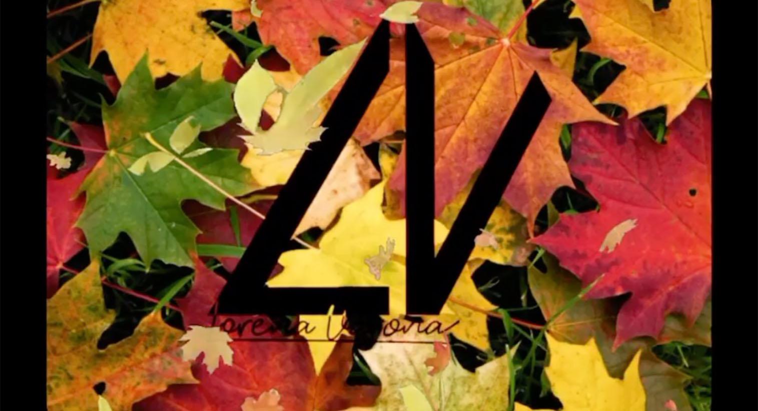 La caída del cabello durante otoño